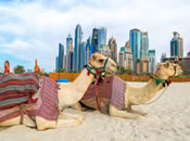 تأجير السيارات الرخيصة في الإمارات العربية المتحدة