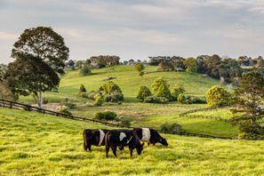 ايجار سيارات سهول كوبرز, استراليا