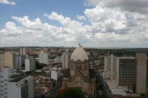 ايجار سيارات أراراكورا, البرازيل