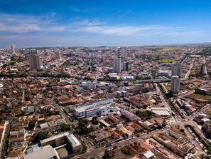 ايجار سيارات فرانكا, البرازيل