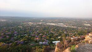ايجار سيارات روزبانك, جنوب إفريقيا