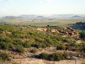 ايجار سيارات فريهيد, جنوب إفريقيا