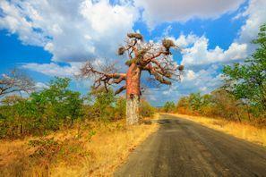 ايجار سيارات مخادو, جنوب إفريقيا