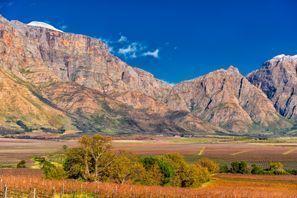 ايجار سيارات ورسستر, جنوب إفريقيا