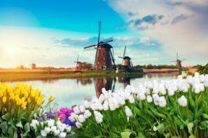 تأجير السيارات الرخيصة في هولندا